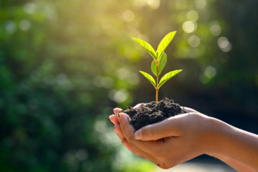 地球環境の改善に貢献する。